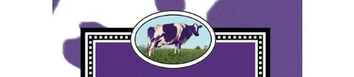 Purple Cow by Seth Godin.