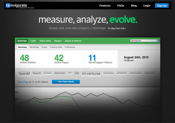 Reinvigorate is one of the newest web analytics on the market.