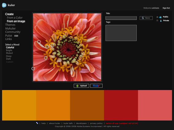 Use Adobe Kuler to pull color schemes off of an image.