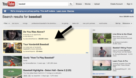 TrueView lets you show targeted video ads for specific searches.