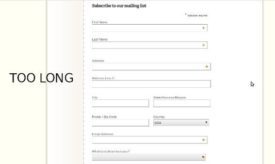 Long email subscription forms kill  conversion.