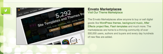Envato specializes in digital products such as WordPress themes.