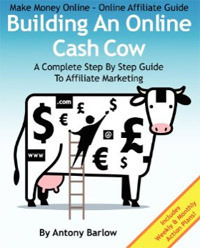 Make Money Online - Online Affiliate Guide.
