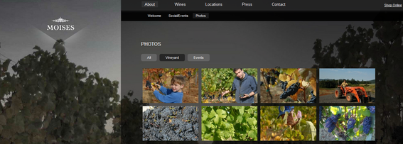 At full size, the Moises Wines site shows images in several columns, and features a photo of vineyards in the background.