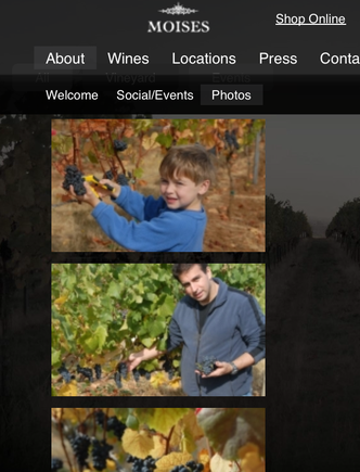 At its minimum width, the Moises Wines site shows only a single column of photos, and no longer highlights the background image.