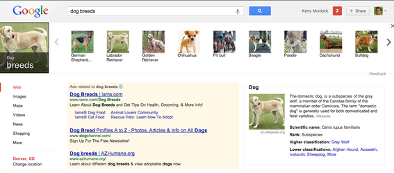 "Searching fro ""dog breeds"" in Google produces the thumbnail carousel at top."