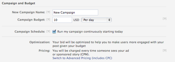 The final step includes setting a campaign budget.