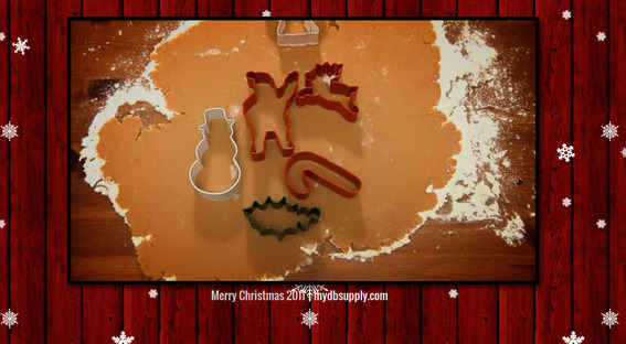 Consider creating a simple Christmas greetings video.