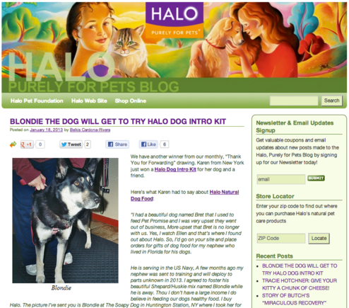 Halo's blog addresses people and search engines.