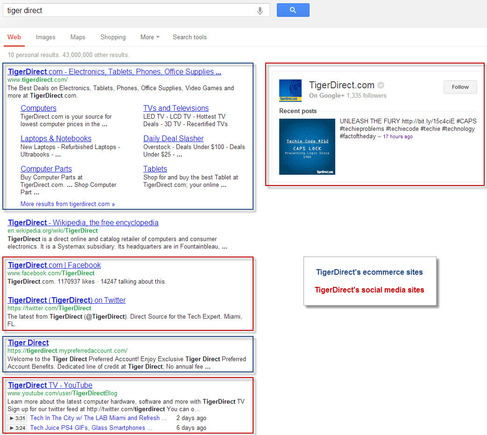 TigerDirect's branded Google search results page