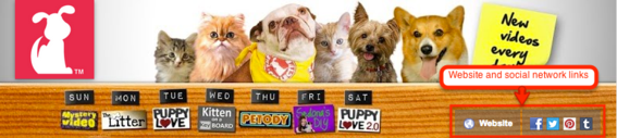 The Pet Collective channel art includes links to its website and social networks.