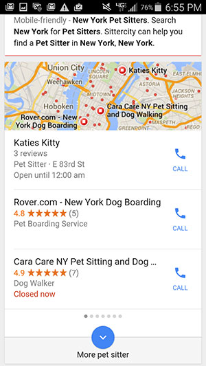 Pet sitters shown on Google My Business, top of search result pages.
