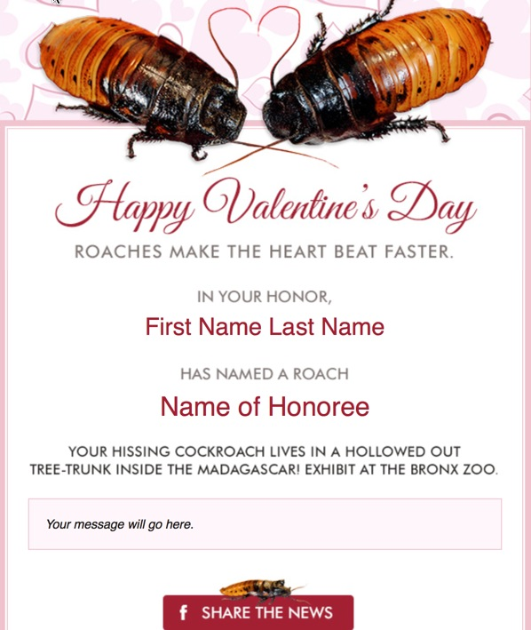 Love is like a roach. Both make the heart beat faster.