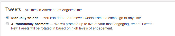 Twitter options for promotion: automatic or manual